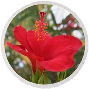 Soft Red Hibiscus With A Natural Garden Background Round Beach Towel