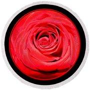 Soft Red Rose Closeup Round Beach Towel
