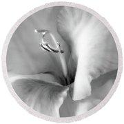 Soft Silver Gladiola Floral Round Beach Towel