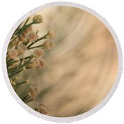 Softness In The Desert Round Beach Towel