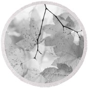 Softness Of Maple Leaves Monochrome Round Beach Towel