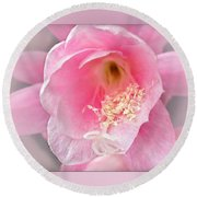 Soft..pink..delicate Round Beach Towel