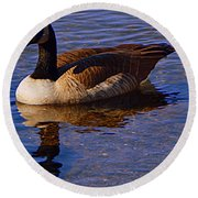 Solitary Goose Round Beach Towel