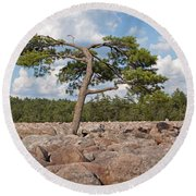 Solitary Tree Amidst Field Of Boulders Round Beach Towel