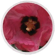 Solo Rose Of Sharon Round Beach Towel