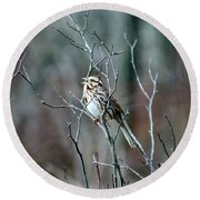 Songs Of Sparrows Round Beach Towel