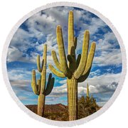 Sonoran Desert Beauty Round Beach Towel