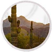 Sonoran Desert II Round Beach Towel by Robert Bales