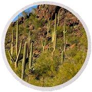 Sonoran Desert West Saguaro National Park Round Beach Towel