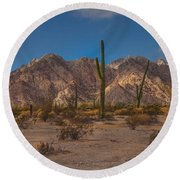 Sonoran  Round Beach Towel