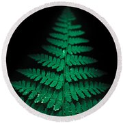 Soothing Fern Round Beach Towel