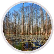 South Carolina Swamps Round Beach Towel