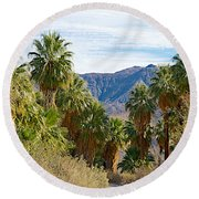 South Side View Of Andreas Canyon Trail In Indian Canyons-ca Round Beach Towel