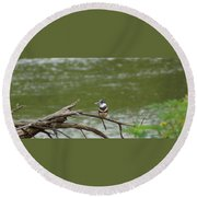 Southeastern Kingfisher Round Beach Towel