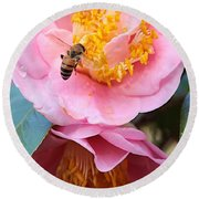 Southern Bee Round Beach Towel