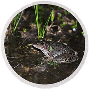 Southern Leopard Frog Round Beach Towel