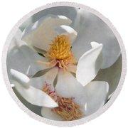 Southern Magnolia Blossom Round Beach Towel