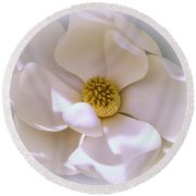 Southern Magnolia Round Beach Towel