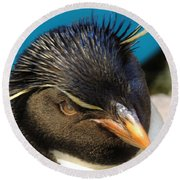 Southern Rock Hopper Penguin Round Beach Towel
