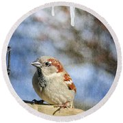 Sparrow 5   Round Beach Towel
