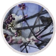 Sparrow And The Beauty Berry Round Beach Towel