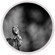 Sparrow In Black And White Round Beach Towel