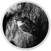 Sparrow On A Tree Round Beach Towel