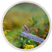 Sparrow On Board Round Beach Towel
