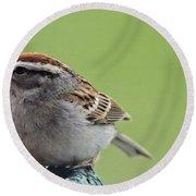 Sparrow Snack Round Beach Towel