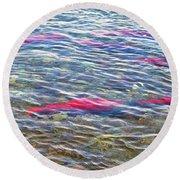Spawning Salmon In Moraine River In Katmai National Preserve-ak Round Beach Towel