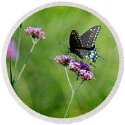 Spicebush Swallowtail Butterfly In Garden Round Beach Towel