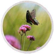Spicebush Swallowtail Butterfly In Meadow Round Beach Towel