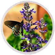Spicebush Swallowtail Round Beach Towel