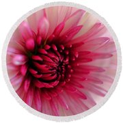 Splash Of Pink Round Beach Towel