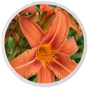 Splendid Day Lily Round Beach Towel