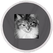 Spooleete. Cat Portrait In Black And White. Round Beach Towel
