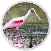 Spoonbill In The Pond Round Beach Towel