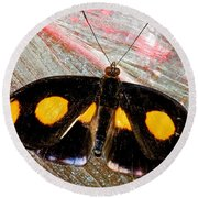 Spotted Grecian Shoemaker Butterfly Round Beach Towel