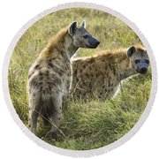 Spotted Hyaena Round Beach Towel