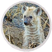 Spotted Hyena Pup In Kruger National Park-south Africa  Round Beach Towel
