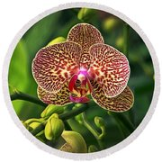 Spotted Orchid Round Beach Towel