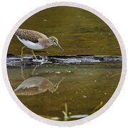 Spotted Sandpiper Pictures 61 Round Beach Towel