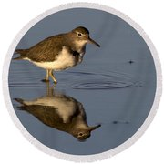 Spotted Sandpiper Reflection Round Beach Towel