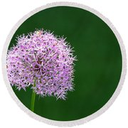Spring Allium Round Beach Towel
