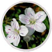Spring Beauty Wildflowers - Claytonia Virginica Round Beach Towel