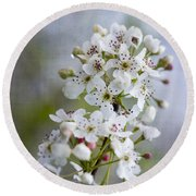 Spring Blooming Bradford Pear Blossoms Round Beach Towel