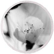 Spring Blooms 0189 Round Beach Towel