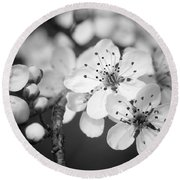 Spring Blooms 6690 Round Beach Towel