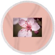 Spring Blooms 6697 Round Beach Towel