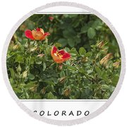 Spring Blooms In Colorado Round Beach Towel
